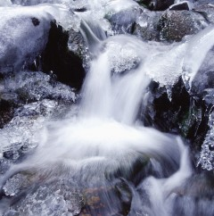Cascades on a Frozen River